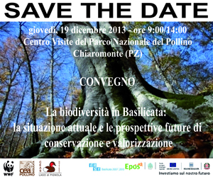 save the date5